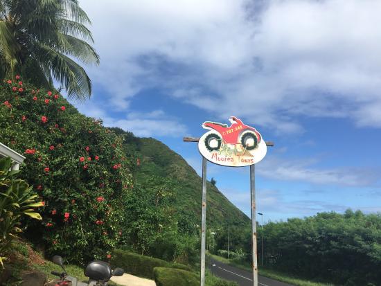 Moorea, Fransız Polinezyası: photo0.jpg