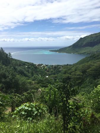 Moorea, Fransk Polynesia: photo8.jpg