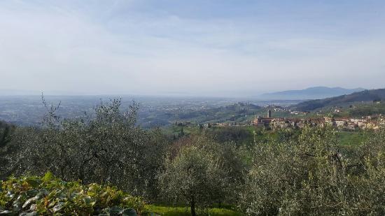 Villa Cecchini : 20160331_094946_large.jpg