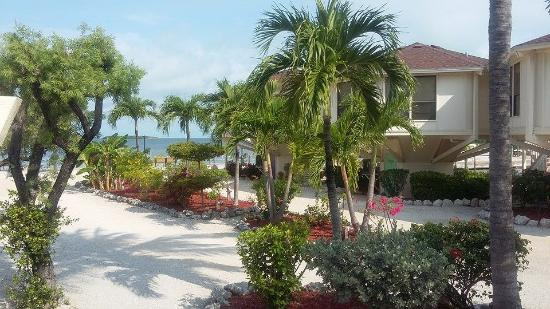 Reef Resort: All villas are separate and overlook the beautifully landscaped grounds.