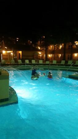 Blue Tree Resort at Lake Buena Vista afbeelding