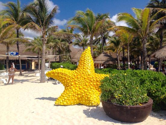 Sandos Playacar Beach Resort Reviews
