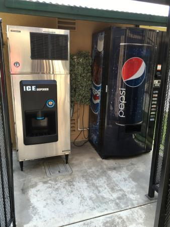 Super 8 Salinas : soda machine
