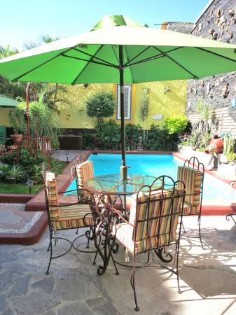 Casa Armonia: Read a book or enjoy a margarita poolside