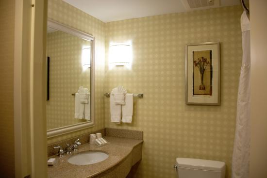 Hilton Garden Inn Mystic Groton: Room bathroom