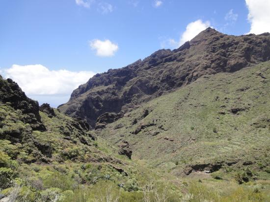 masca - Picture of Masca Valley, Tenerife - TripAdvisor