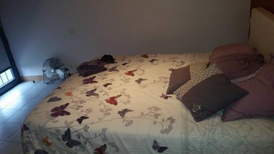 Chez Virginie: grand lit
