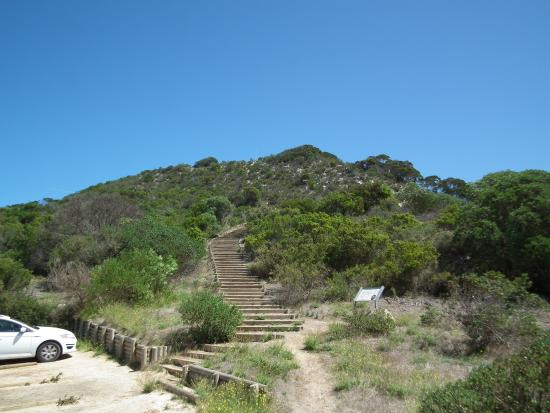 Steps to Prospect Hill