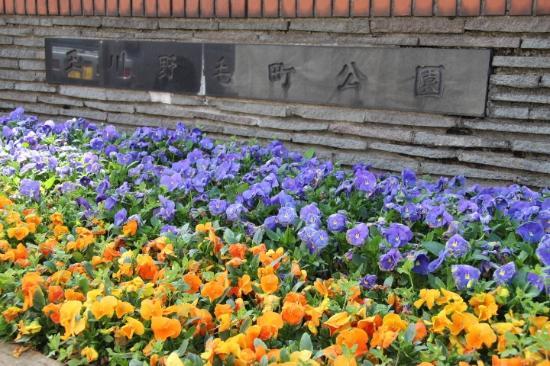 Tamagawa Nogemachi Park