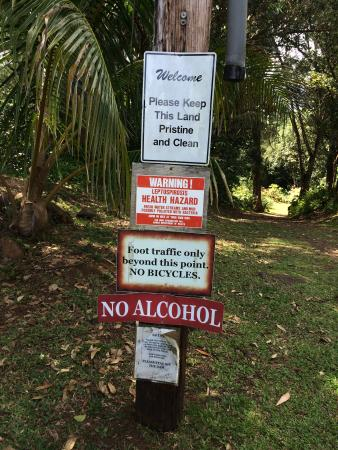 Kilauea Foto