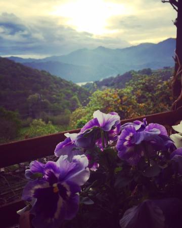 Armeno, Италия: dalla finestra della camera