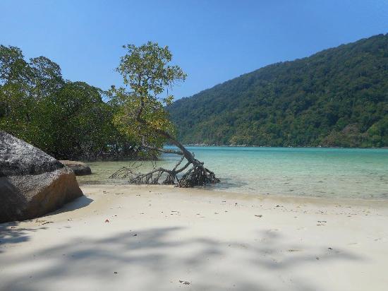 Khuraburi, تايلاند: By our favorite rock