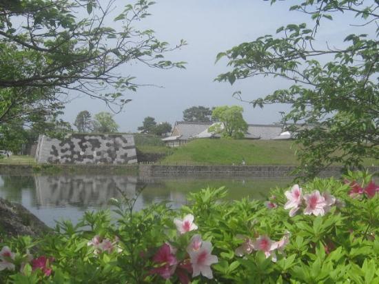Sagajo Park
