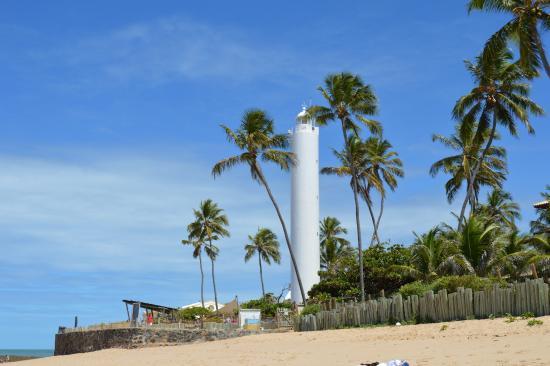 cdc0e949bd0 Farol da Praia do Forte - Fica dentro do Tamar - Foto de Praia do ...