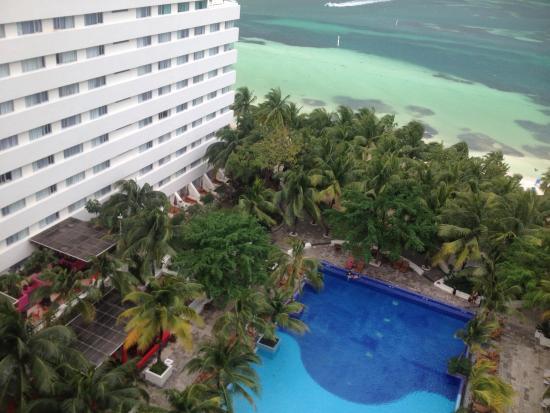 Grand Oasis Palm: photo1.jpg