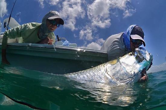 Fly Fish Boca Grande