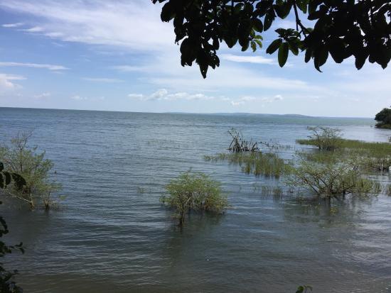 Rubondo Island, Tanzania: photo3.jpg