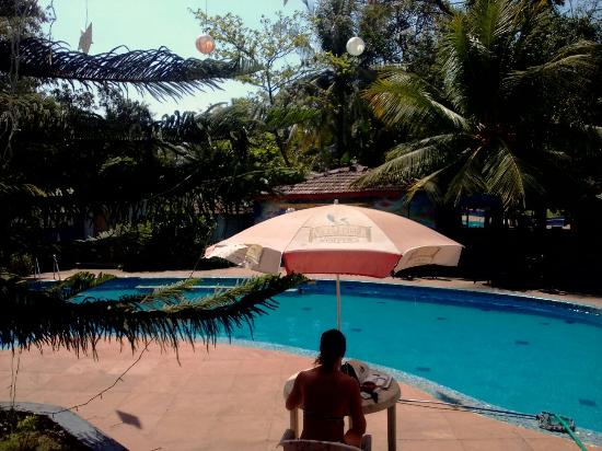 Pool - OYO 9516 Retreat Anjuna Resort Photo