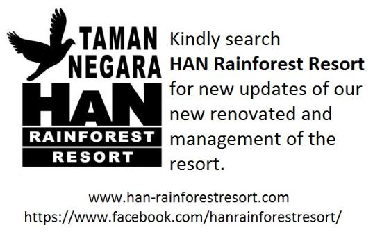 Rainforest Resort