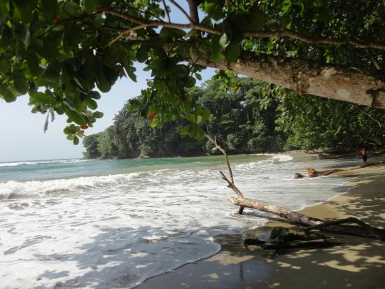 Nicoya, Costa Rica: Playa Manzanillo