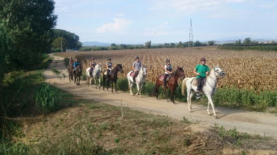 Hipica Begur Excursions a Caballo