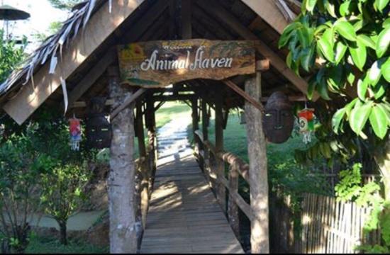 Green Haven Adventure Farm