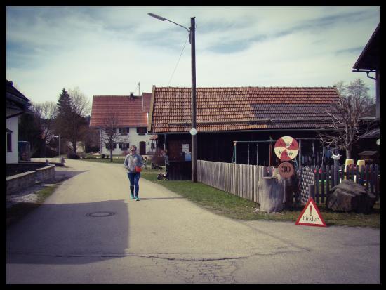 Gasthof Bruckenwirt: Дома рядом с Gasthof Brückenwirt