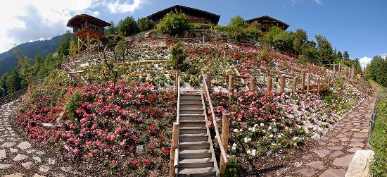 Ortisei, Italy: Panorama