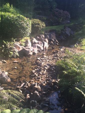 Τάμεσης, Νέα Ζηλανδία: photo2.jpg