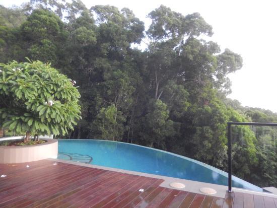 Warrawong Lodge: infinity pool
