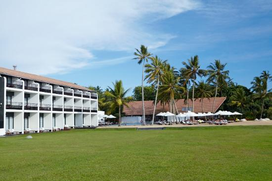 The Surf Hotel: Lawn Area