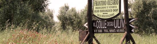Mirto, Italia: Insegna agriturismo