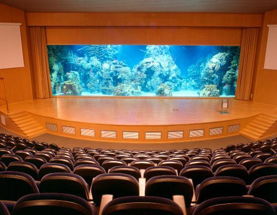 巴伦西亚海洋公园