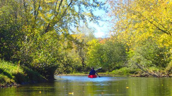 Sutton, Canadá: canoe excursion