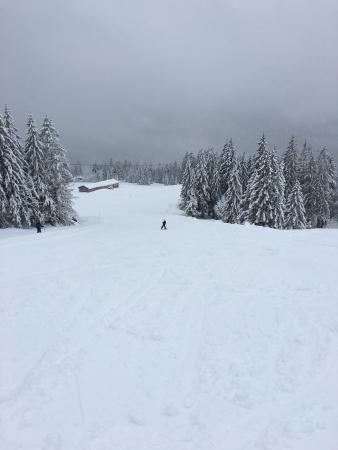 Ski Area - Alpenbahnen Spitzingsee