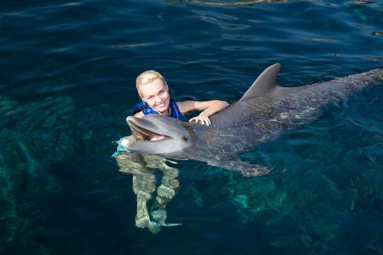 Delphinus Puerto Morelos