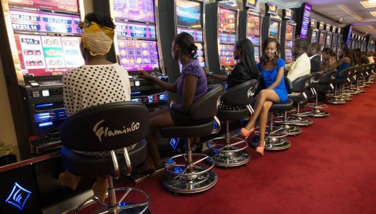 Casino nairobi cats monte casino