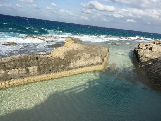 Stella Maris Resort Club: Erna Nature Pool