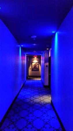 The Saint Hotel, Autograph Collection: Very cool blue lit hallway to our room.