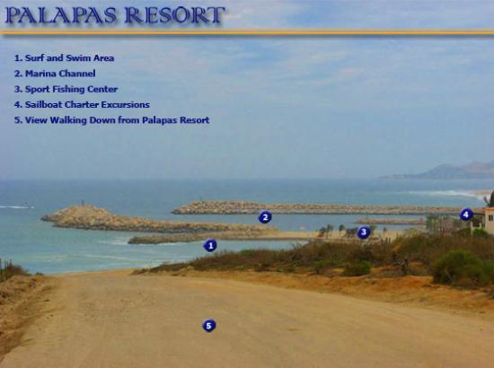 Palapas Resort: Marina points of interest