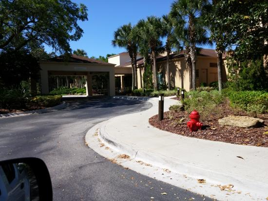 courtyard jacksonville mayo clinic beaches picture of courtyard rh tripadvisor ca