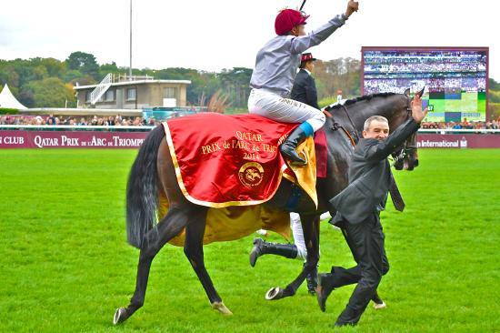Longchamp Racecourse: 凱旋門賞2014優勝馬トレヴ