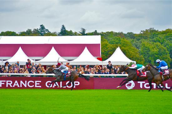 Longchamp Racecourse: 凱旋門賞2014ゴール寸前
