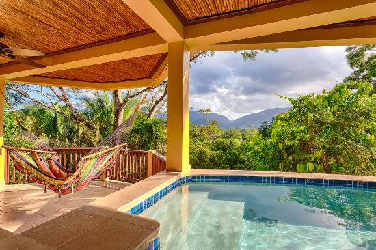 Sleeping Giant Lodge: Mountain View Plunge Pool