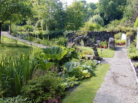 Bonsall, UK: Marginal Stream Plants