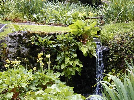 Bonsall, UK: Waterfall