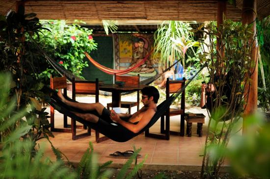 Las Mariposas: hammocks