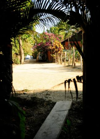 Las Mariposas: 100 steps from beach