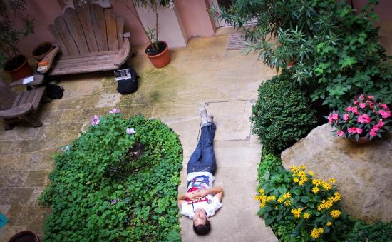 Hostel Ruthensteiner: Relaxed guest in our second garden :)