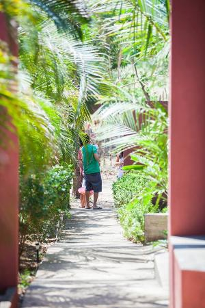 Marbella, Costa Rica: Cadaluna